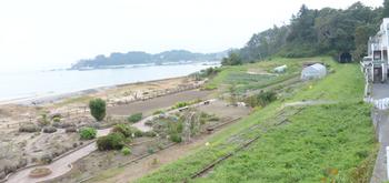 20160905 海水浴場西 w1024 DSC_0278.jpg