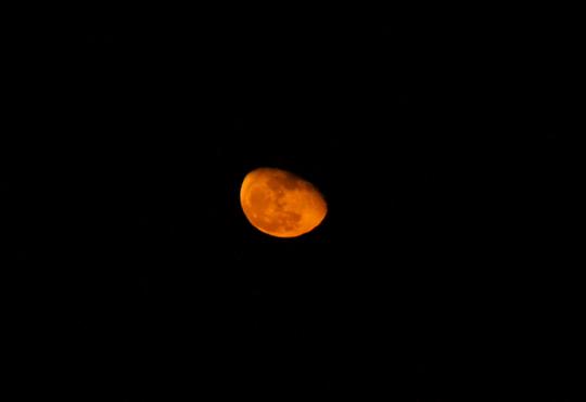 201611182023 赤い月 w800 DSC04186.jpg