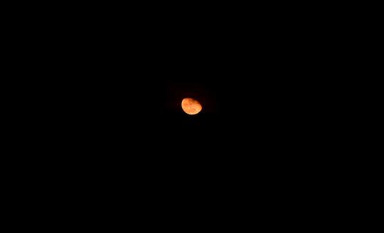 201611182027 赤い月 105mm w800 DSC_6299.jpg