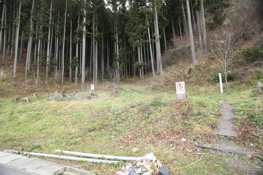 201612021210 裏山登り口か w800 IMG_6095.jpg