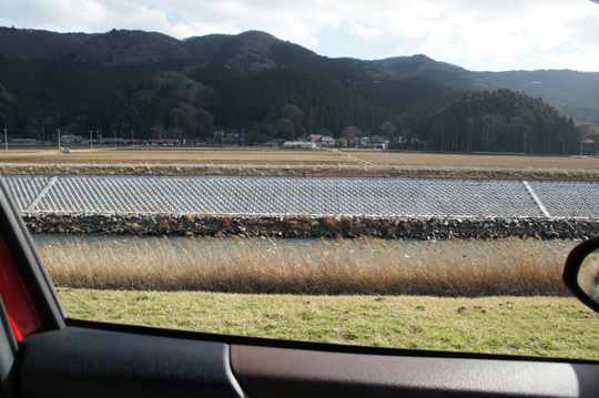 20161202 大川小学校帰路川土手 w800 DSC05202.jpg