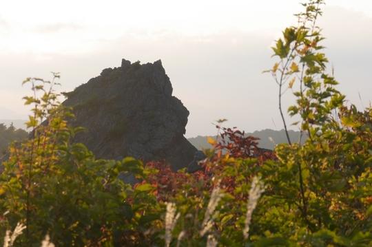 20170926165938 ゴリラ岩 w800 P1130796.jpg
