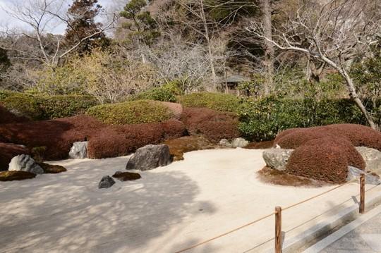 201802161336 枯山水庭園 w800 DSC_0034.jpg