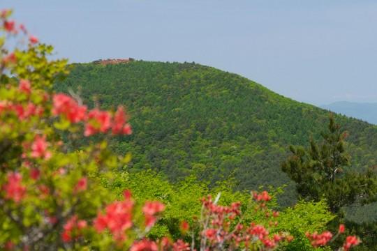 201805211120 德仙状山から見た大森山 w1024 P1260254.jpg
