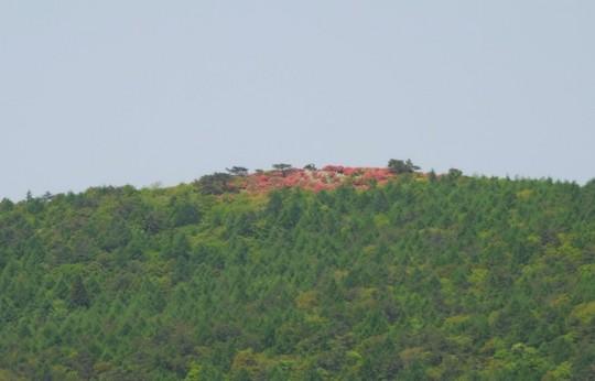 201805211131 德仙状山から見た大森山 W1024 P1260301.jpg