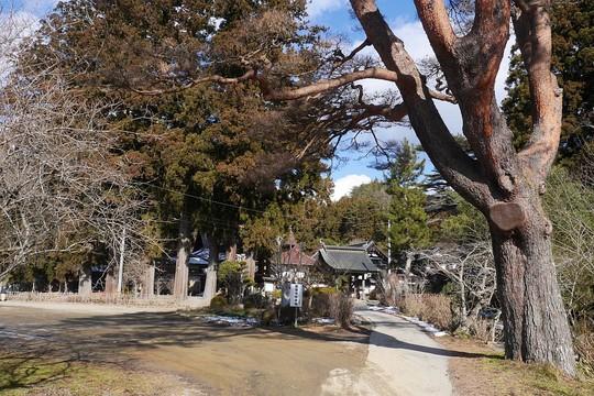 201901021110 興福寺 W1024 P1370516.jpg