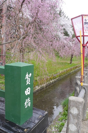 201904261140 賀田橋 h1024 P1450659.jpg