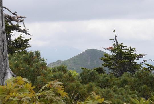 201906101251 畚岳 w1024 P1500860.jpg