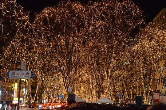 23 DEC 2016 20h40m Pageant of the light in Sendai W800 DSC_3335.jpg